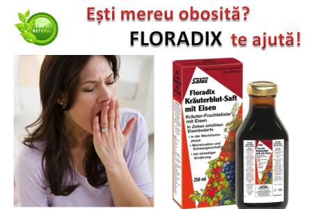 Floradix Krauterblut pentru oboseala